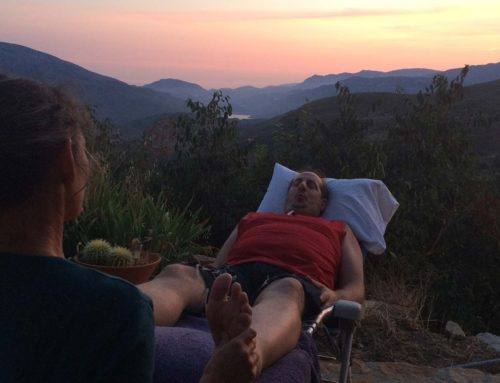 Reflexology Retreat with Mauricio Kruchik (September 2016)